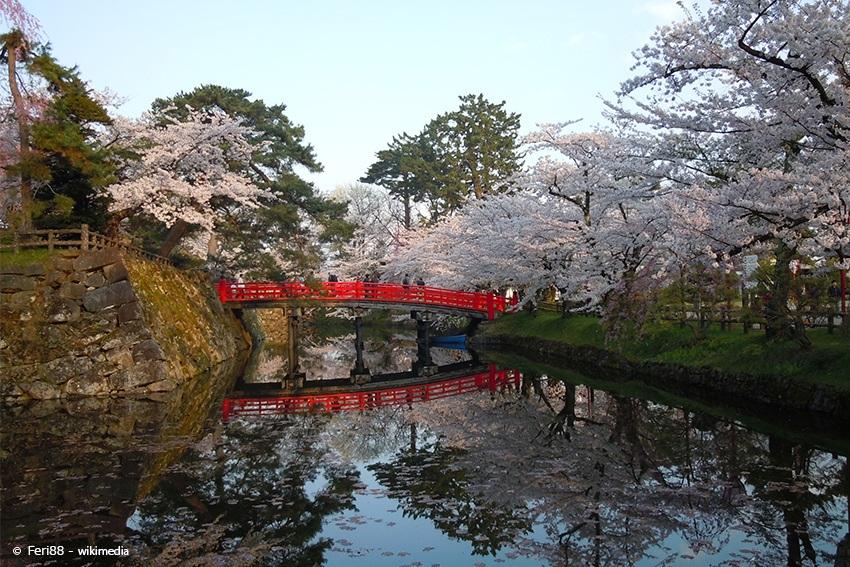 Der Hirosaki Park während der Kirschblüte