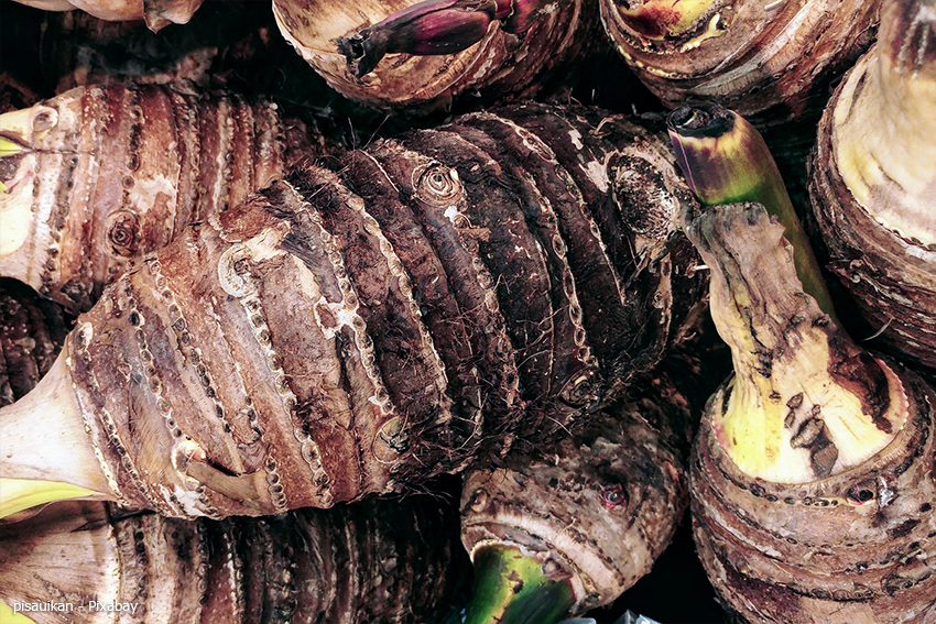 Taro Wurzel - Imoni Rezept zum Nachkochen