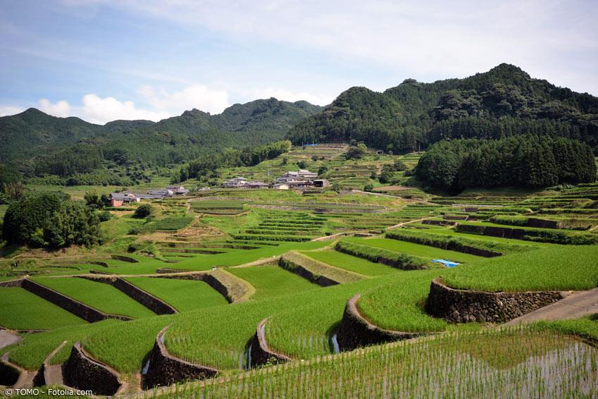 Arita Berge und Reisfelder