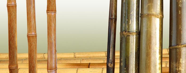 Bambusrohre Fur Garten Terrasse Balkon Versch Langen Verfugbar