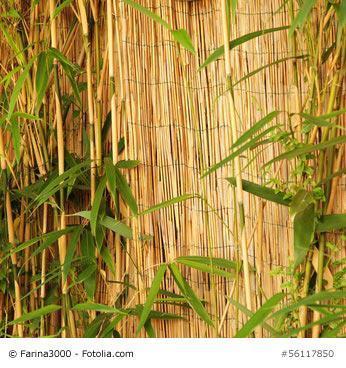 bersteht ihr japanischer bambuszaun unbeschadet den winter. Black Bedroom Furniture Sets. Home Design Ideas