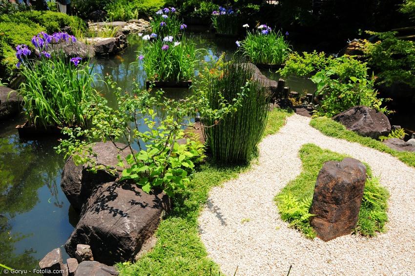 Pflanzen fur japanischen garten - Pflanzen fur japanischen garten ...