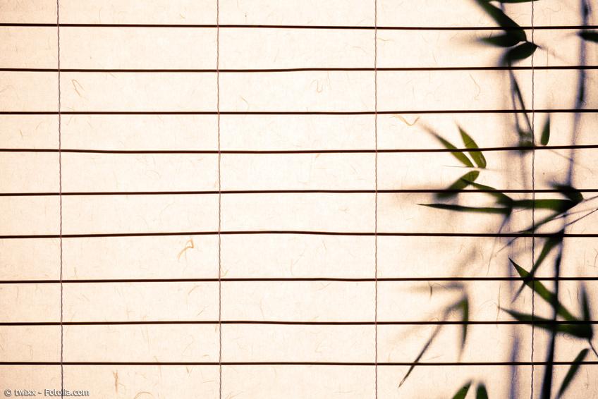 Japanisches Papierrollo mit Bambus Silhouette