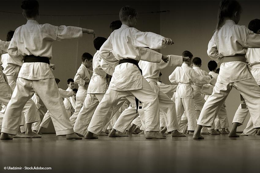 Karate - eine der beliebtesten japanischen Kampfsportarten