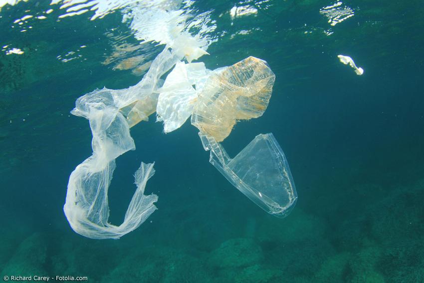 Plastikmüll ist ein großes weltweites Problem. Um die Umwelt zu schützen, muss der Verbrauch von Plastikverpackungen und -tüten unbedingt eingeschränkt werden.