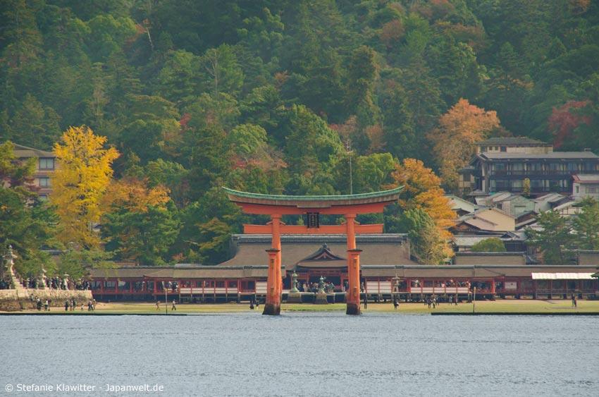 Das rote Torii im Wasser vor dem Itsukushima-Schrein auf Miyajima ist weltberühmt und ein beliebtes Fotomotiv.