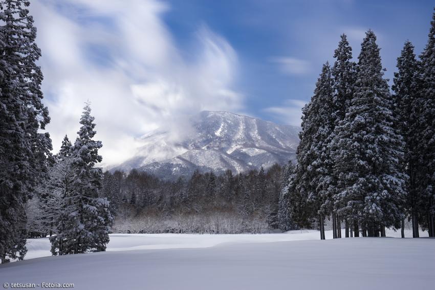 Schneelandschaft mit Bäumen und Berg im Hintergrund