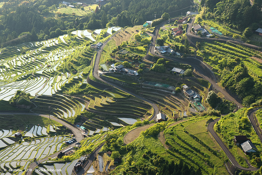 Tenmusu-Rezept und Geschichte: der Ursprung des Gerichtes in der Präfektur Mie