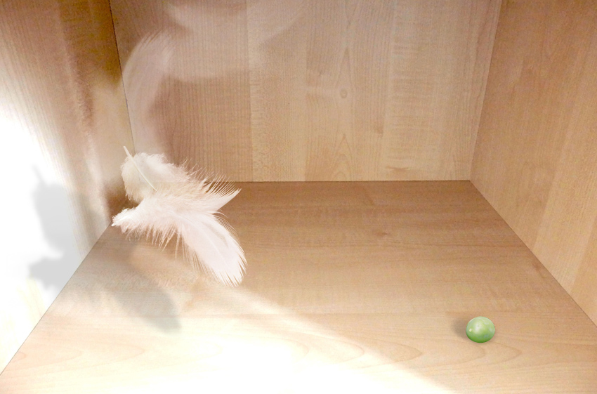 In eine Holzbox fällt eine Feder im Lichtschein, gegenüber liegt eine Erbse im Schatten.