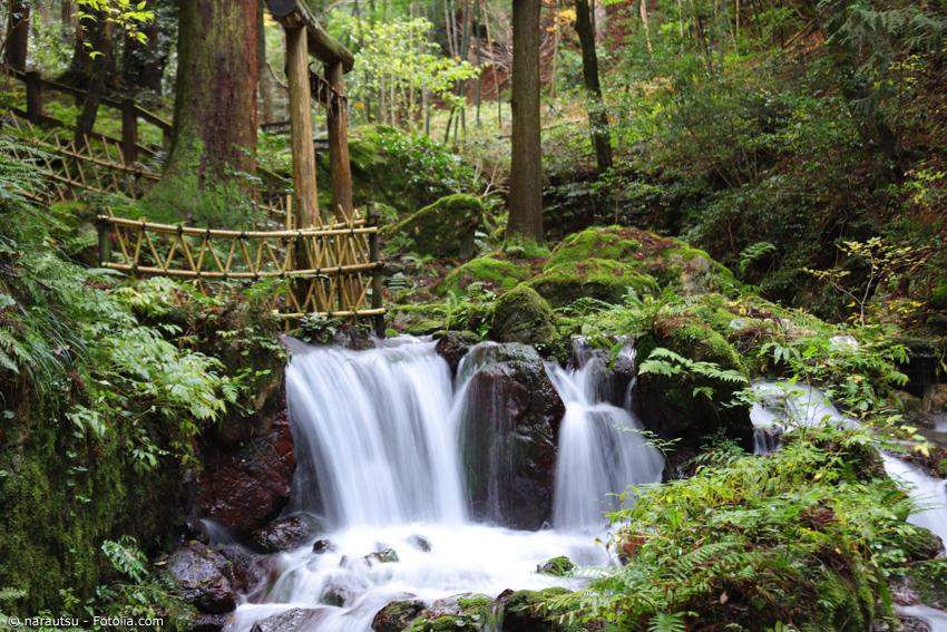 Wasserfall im Wald mit Bambustor