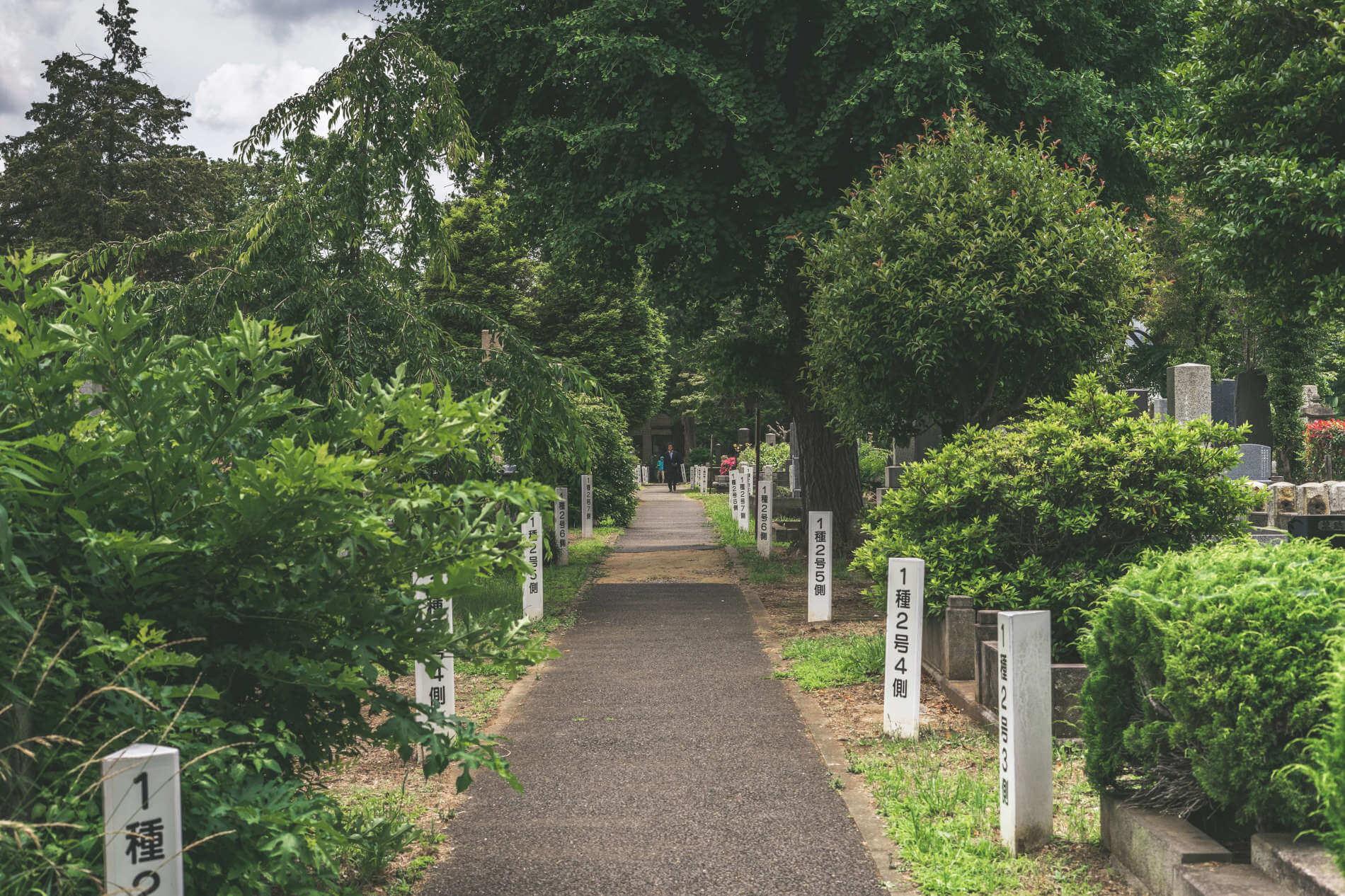 Heiliger Weg eines Shinto-Schreins