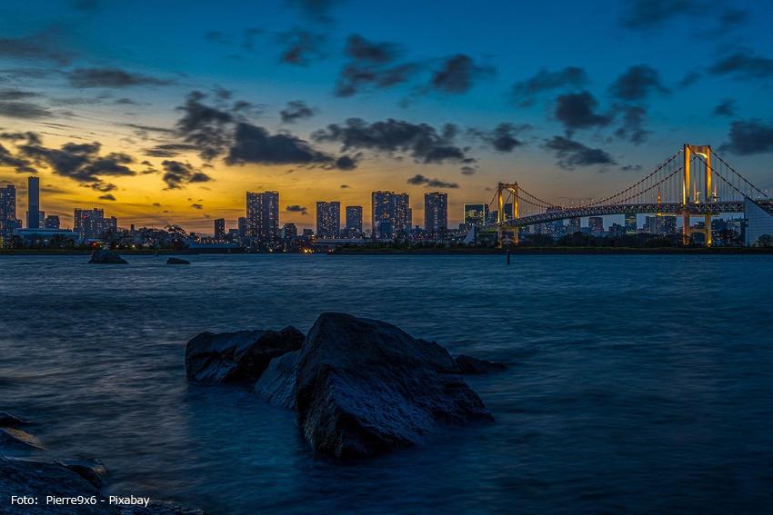 Die Skyline von Tokio bei Nacht
