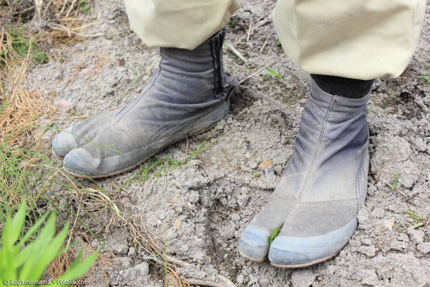 Für Feldarbeit, Kampfsport und mehr werden seit lange Zeit Tabi aus verstärkter Baumwolle getragen, die meistens mit einer stabilen Sohle verstärkt sind.