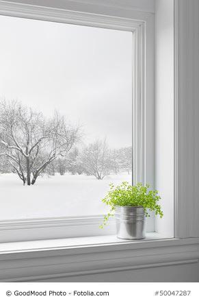 richtige pflege f r futon und tatami in der kalten jahreszeit. Black Bedroom Furniture Sets. Home Design Ideas