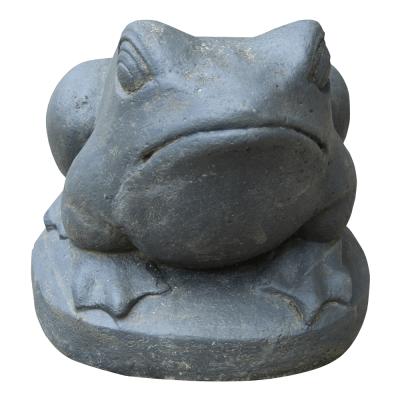 Frosch, Lavaguß