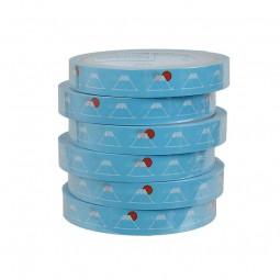 Masking Tape 'Fuji blau'
