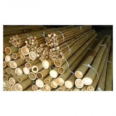 Bambusrohre, naturgelb, 500 - 520 cm