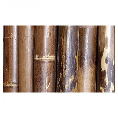 Bambusrohre 3m, schwarz-braun gefleckt