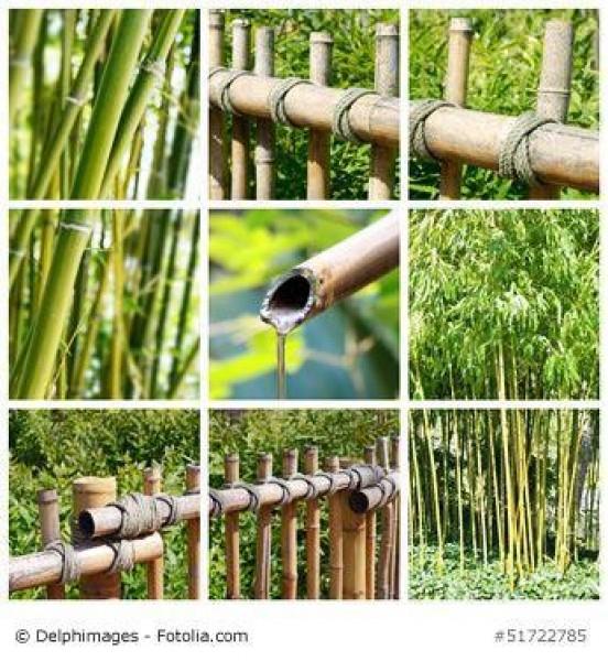 Kann mein japanischer Bambuszaun draußen überwintern?