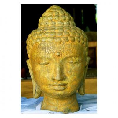Buddha Büste Höhe 32 cm