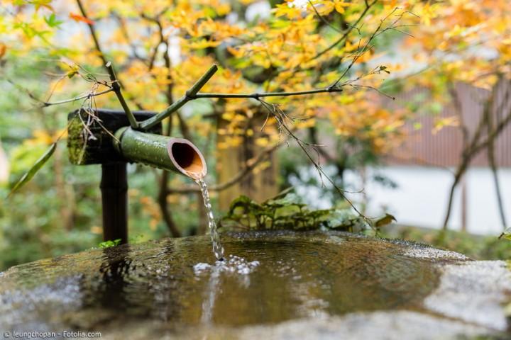 Dekorationen für den Garten – So bringen Sie Japan in Ihre grüne Oase