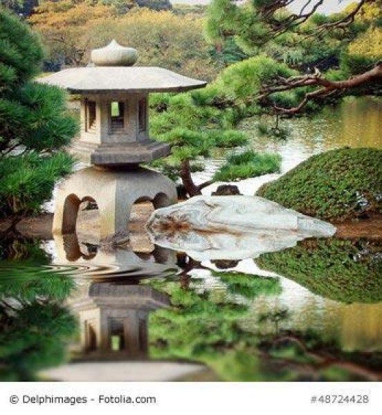 Japanische Wasserspiele verbessern die Wasserqualität im Gartenteich