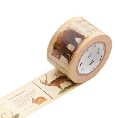 Masking Tape - Encyclopedia, animal
