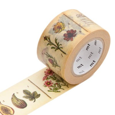 Masking Tape - Encyclopedia, plant