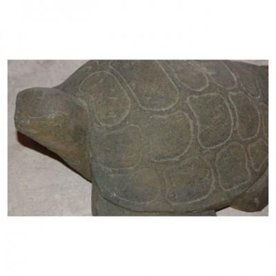 Meeresschildkröten aus Lavagestein geschlagen