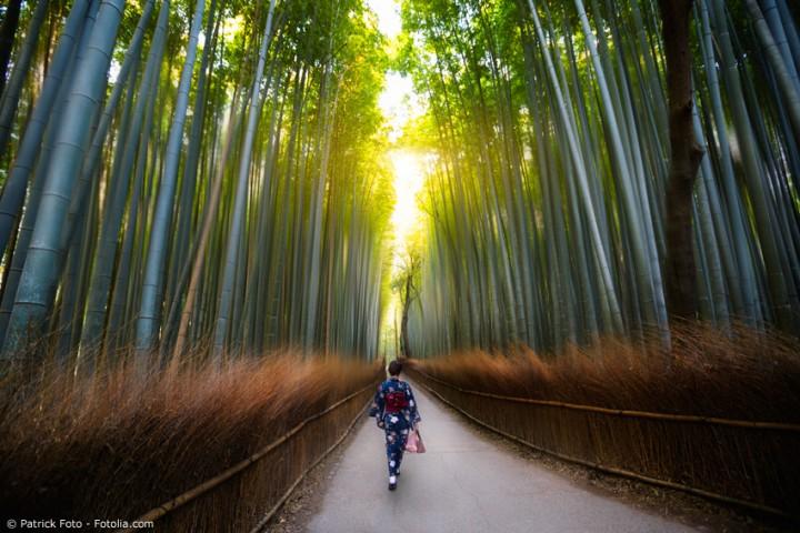 Warum kein Bambusbett? 7 gute Gründe für Bambusmöbel!