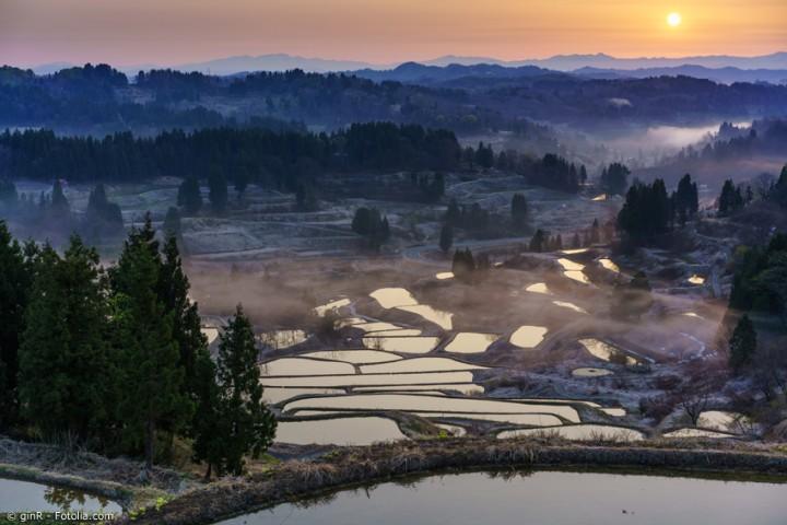 Reise nach Niigata zum leckersten Reis und Sake Japans