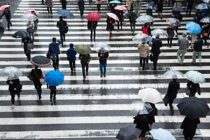 Die Regenzeit in Japan, wie übersteht man sie am besten?