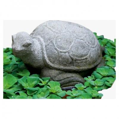 Schildkröte, Lavastein