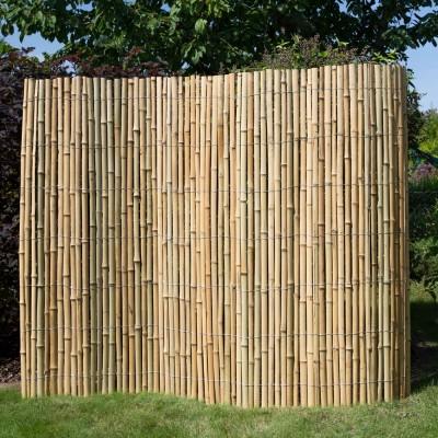 Sichtschutz - Bambus