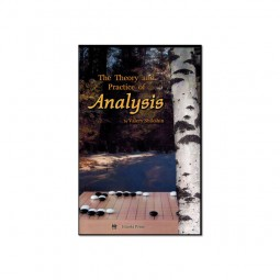 The Theory and Practice of Analysis