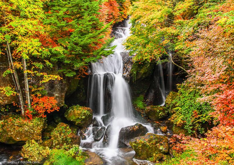 Wasserfall mit Herbstlaub in Tochigi
