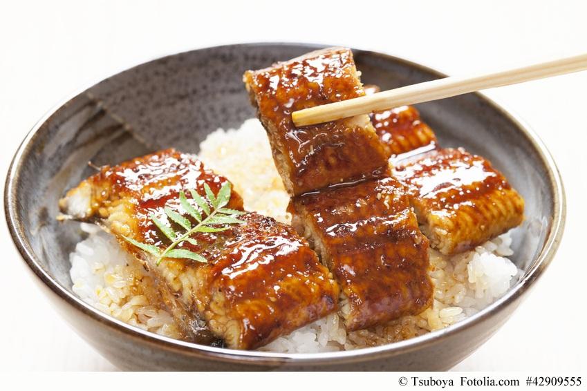 Unadon, das japanische Sommergericht