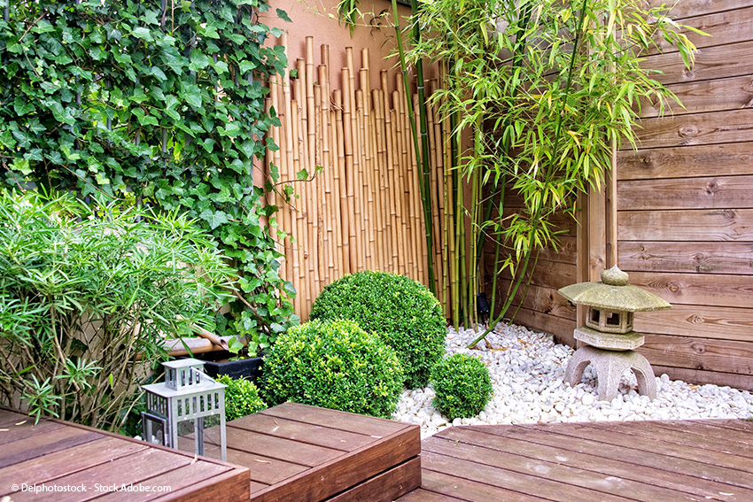Bambusrohre und Bambusstangen im Garten